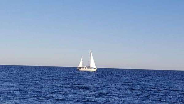 eight hour day sail boat charter